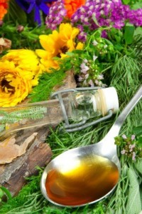 10600523-fresh-herbs-for-herbal-medicine-on-a-spoon
