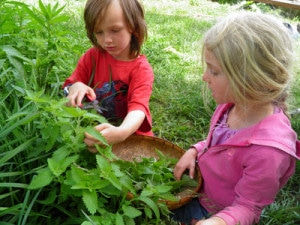 Herbalism for Children: Interview with Kristine Brown