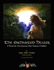 The Enchanted Healer: A Guidebook for Finding Your True Medicine